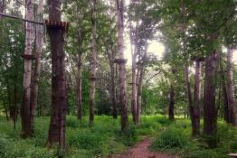 Stary Sącz Atrakcja park linowy Lemur Park